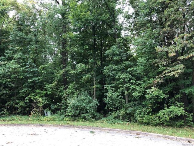 0 Beech Tree Lane Lot 6, Frankenmuth, MI 48734 (MLS #R218093317) :: Berkshire Hathaway HomeServices Snyder & Company, Realtors®