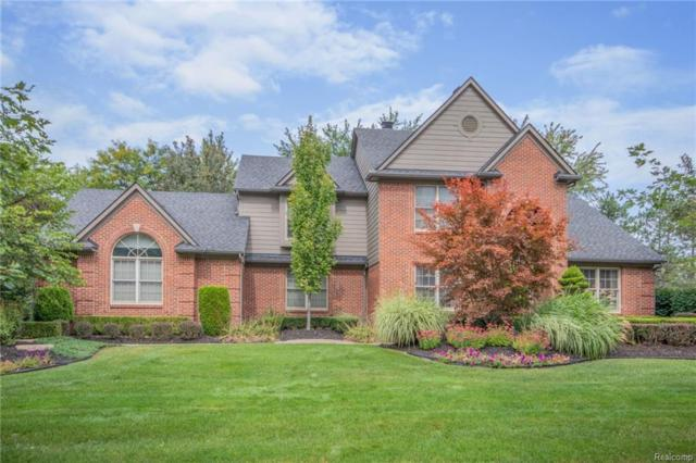 47716 Adriana Crt, Canton, MI 48187 (MLS #R218102756) :: Keller Williams Ann Arbor