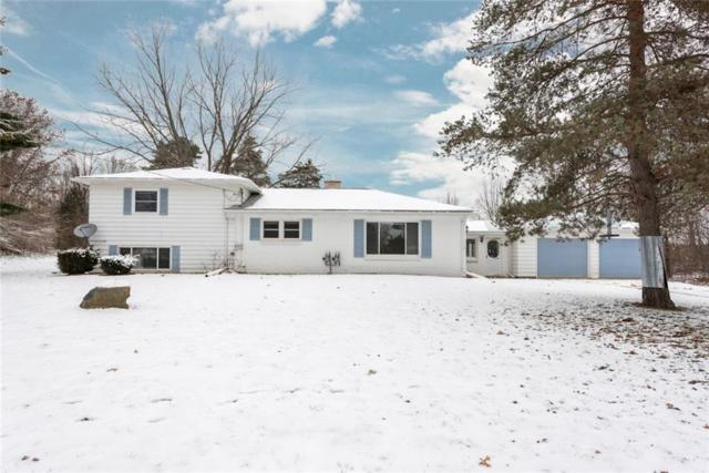 16366 Farnsworth Rd, Chelsea, MI 48118 (MLS #R218114249) :: The Toth Team