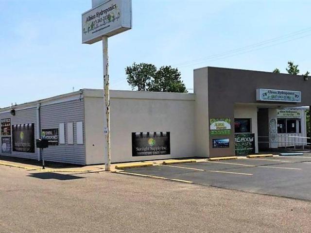 1402 N Eaton St, Albion, MI 49224 (MLS #R218115080) :: Keller Williams Ann Arbor