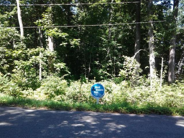 14 Cavan Crt, Onsted, MI 49265 (MLS #R219002088) :: Keller Williams Ann Arbor