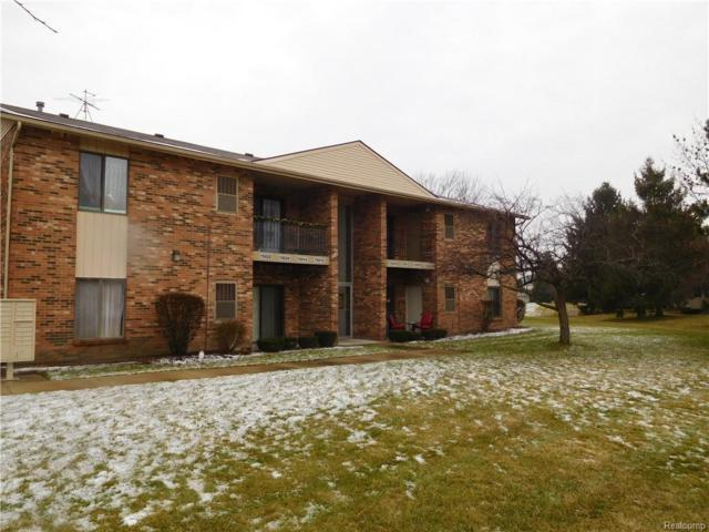 15010 Island Dr. Dr, Sterling Heights, MI 48313 (MLS #R219012086) :: The Toth Team