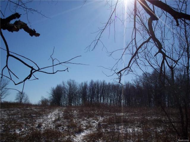 0 Bell Oak Rd, Webberville, MI 48892 (MLS #R219012332) :: Keller Williams Ann Arbor