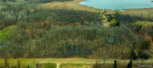 10800 Mcnally Rd, South Lyon, MI 48178 (MLS #R219033199) :: Berkshire Hathaway HomeServices Snyder & Company, Realtors®
