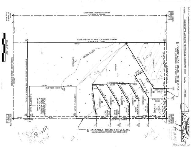 0 Perry Lake Rd, Ortonville, MI 48462 (MLS #R219034495) :: Berkshire Hathaway HomeServices Snyder & Company, Realtors®