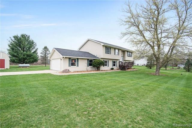 5647 Owosso Rd, Fowlerville, MI 48836 (MLS #R219036962) :: The Toth Team