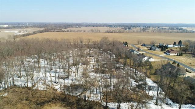 2800 Sand Creek Hiwy, Adrian, MI 49221 (MLS #R219043161) :: The Toth Team