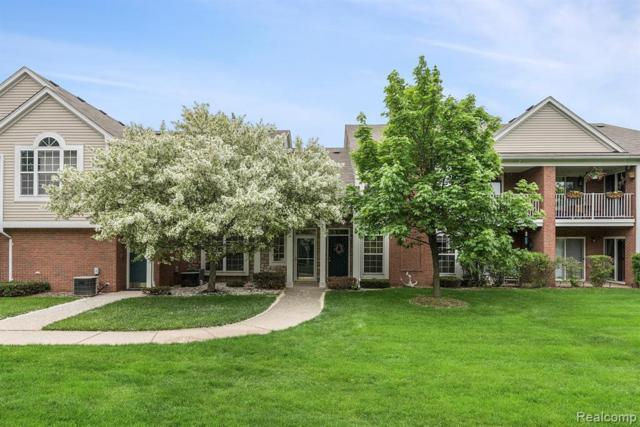 5436 Pine Aires Dr, Sterling Heights, MI 48314 (MLS #R219049171) :: The Toth Team