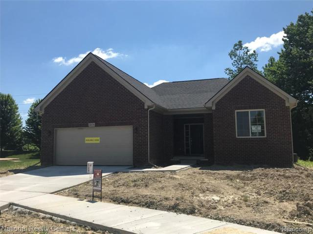 38578 Blueberry Crt, Clinton Township, MI 48036 (MLS #R219064546) :: The Toth Team