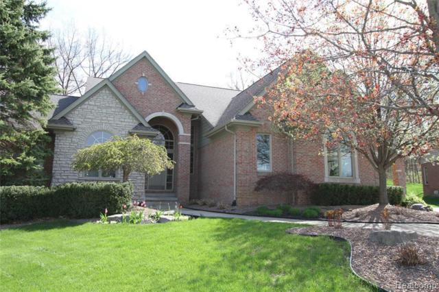 5625 Fox Ridge Dr, Clarkston, MI 48348 (MLS #R219070823) :: Berkshire Hathaway HomeServices Snyder & Company, Realtors®