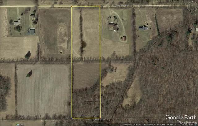 0 Gravel Creek Rd, North Branch, MI 48461 (MLS #R219095644) :: Berkshire Hathaway HomeServices Snyder & Company, Realtors®