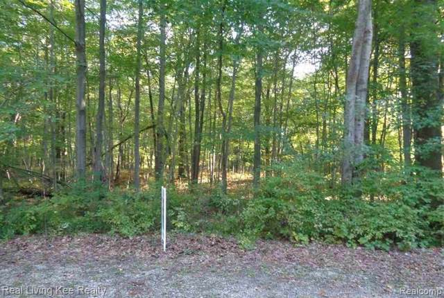 0-Lot 32 Mary Anne, Caseville, MI 48725 (MLS #R219107608) :: Berkshire Hathaway HomeServices Snyder & Company, Realtors®
