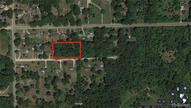 0 Martinsville Rd, Belleville, MI 48111 (MLS #R219120256) :: Berkshire Hathaway HomeServices Snyder & Company, Realtors®