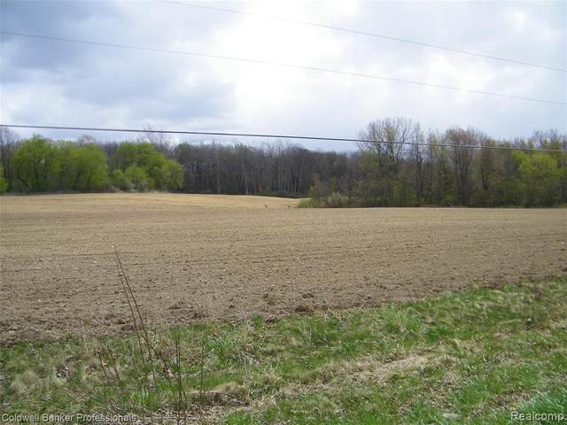 0 Old State Road, North Branch, MI 48461 (MLS #R2210028315) :: Berkshire Hathaway HomeServices Snyder & Company, Realtors®