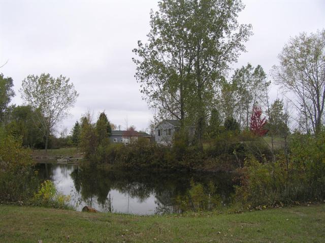 480 Brushaber, Beaverton, MI 48612 (MLS #3254884) :: The Toth Team