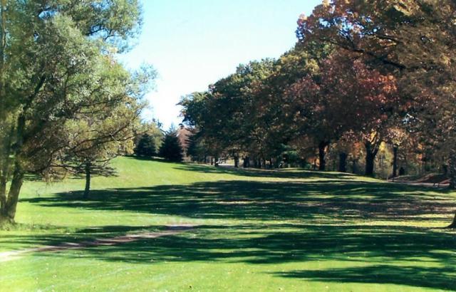 0 Reithmiller Road, Grass Lake, MI 49240 (MLS #3262306) :: Keller Williams Ann Arbor