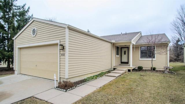 612 Woodcreek Circle, Saline, MI 48176 (MLS #3263669) :: Tyler Stipe Team | RE/MAX Platinum