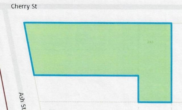 243 Cherry Street, Milan, MI 48160 (MLS #3264311) :: Berkshire Hathaway HomeServices Snyder & Company, Realtors®