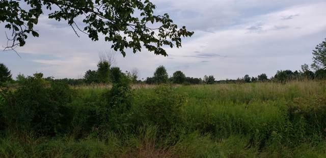 1300 Springville Highway, Adrian, MI 49221 (MLS #3267955) :: Berkshire Hathaway HomeServices Snyder & Company, Realtors®