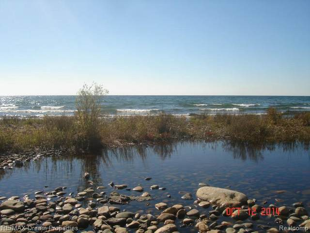 0 E Bass Cove Rd Is, Drummond, MI 49726 (MLS #R218107413) :: Berkshire Hathaway HomeServices Snyder & Company, Realtors®