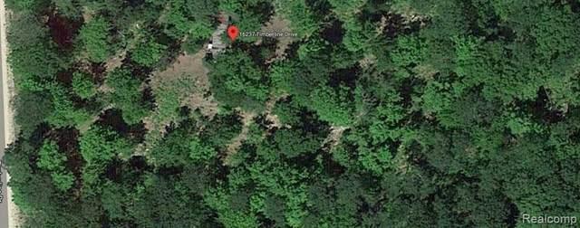16237 Timber Line Drive, Wolverine, MI 49799 (MLS #R2200076558) :: Berkshire Hathaway HomeServices Snyder & Company, Realtors®