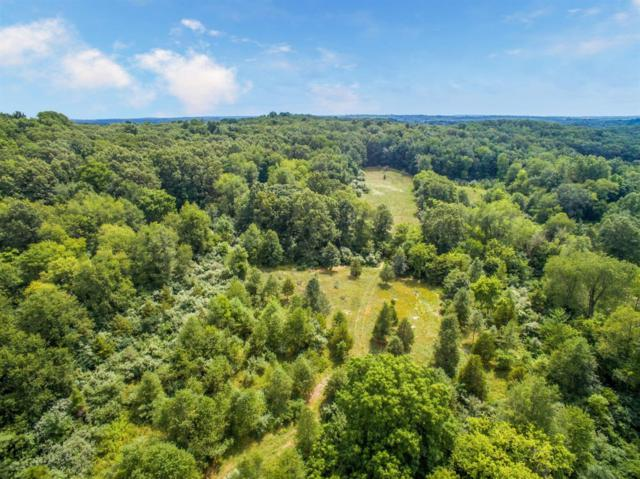 13563 Sharon Hollow Road, Manchester, MI 48158 (MLS #3259476) :: The Toth Team
