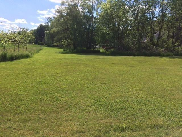 0 Grant Street, Parcel E, Chelsea, MI 48118 (MLS #3252154) :: The Toth Team