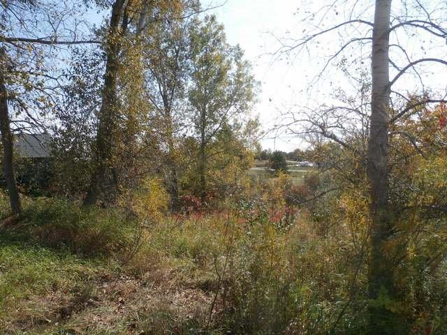 177 Greensboro Way, Gladwin, MI 48624 (MLS #3261310) :: Keller Williams Ann Arbor