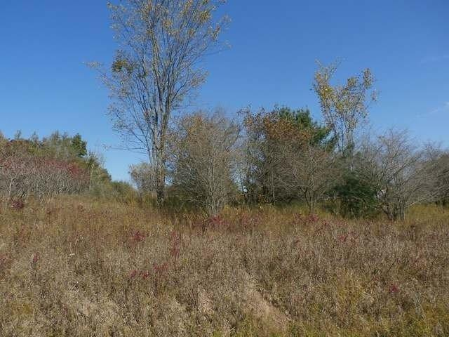 245 Linksview Way, Gladwin, MI 48624 (MLS #3261313) :: Keller Williams Ann Arbor
