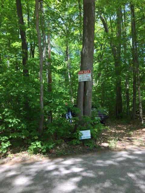 9999 Five Lakes, Gaylord, MI 49735 (MLS #3262279) :: Keller Williams Ann Arbor