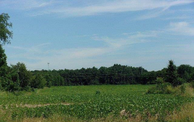 0 Bemis Road, Ypsilanti, MI 48197 (MLS #3268195) :: Berkshire Hathaway HomeServices Snyder & Company, Realtors®