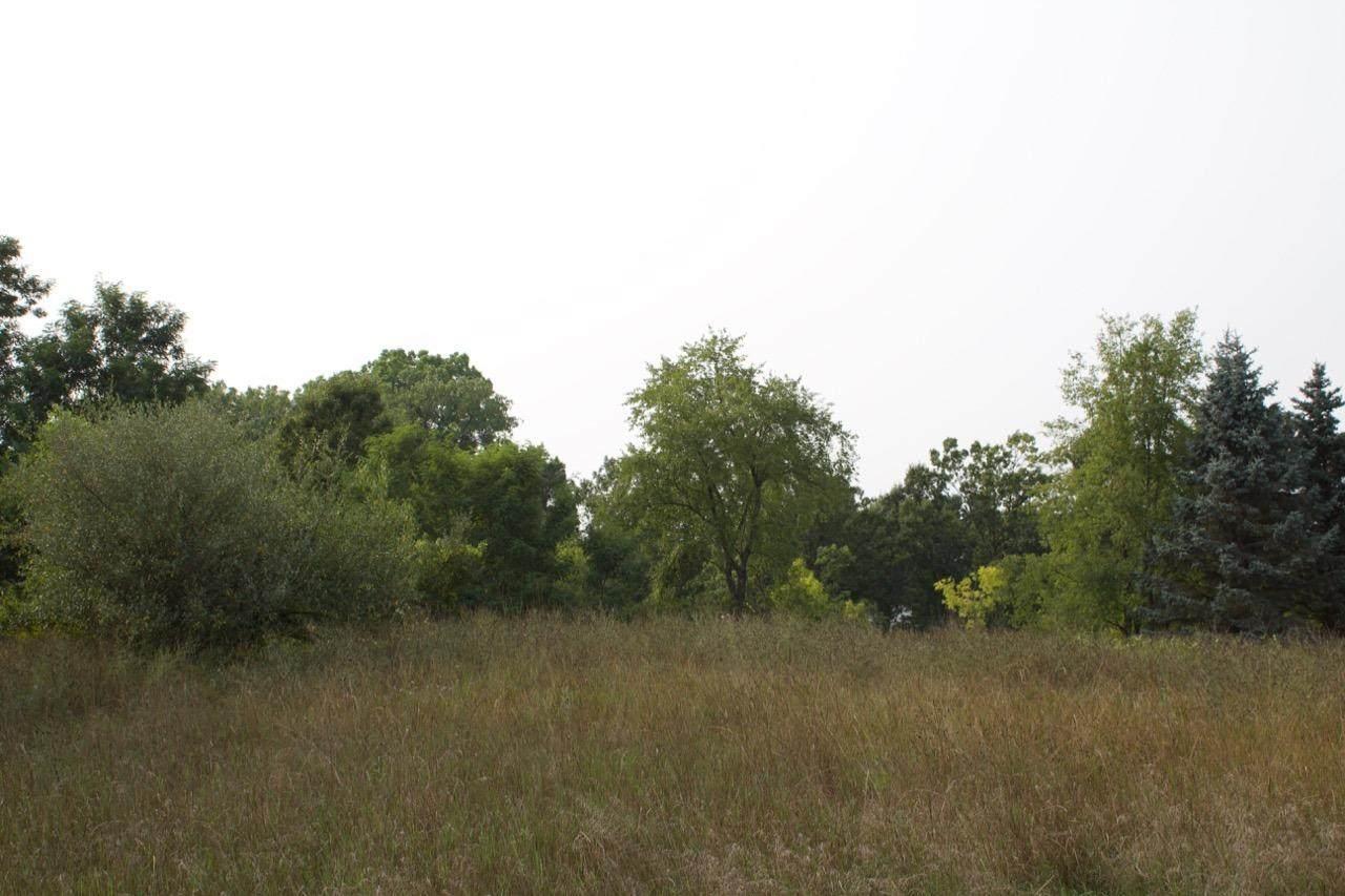 0 Wildflower Ridge - Photo 1