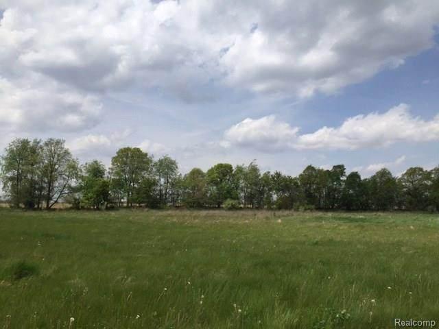 0 Adelines (Lot 20) Way, Fowlerville, MI 48836 (MLS #R217036090) :: Berkshire Hathaway HomeServices Snyder & Company, Realtors®