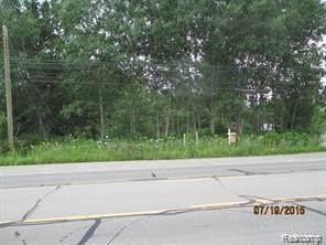 0 Ortonville Road - Photo 1
