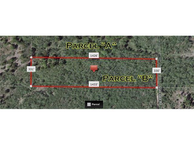 0 Grass Lake, Oscoda, MI 48750 (MLS #R217059484) :: The Toth Team