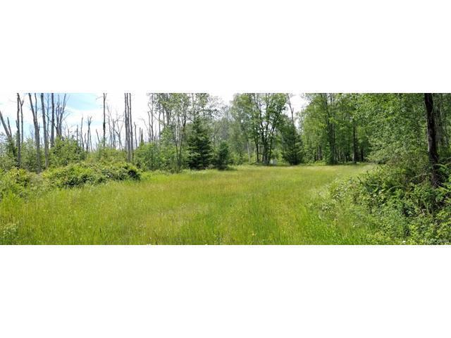 0 Grass Lake Road, Oscoda, MI 48750 (MLS #R217079912) :: The Toth Team