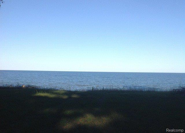 3032 N Lakeshore, Deckerville, MI 48427 (MLS #R218085586) :: The Toth Team
