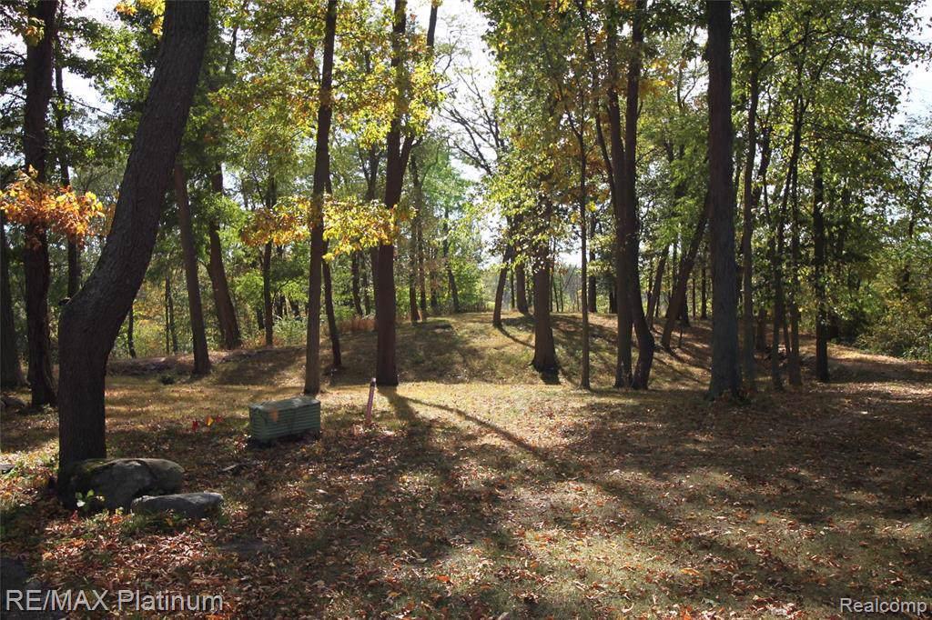 15490 Pineview Ridge Crt - Photo 1