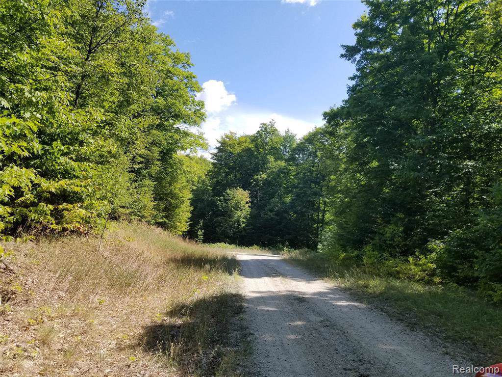 0 Timber Wood Trail - Photo 1
