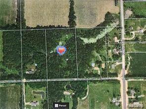 0 Mott Rd, North Branch, MI 48461 (MLS #R219098972) :: Berkshire Hathaway HomeServices Snyder & Company, Realtors®