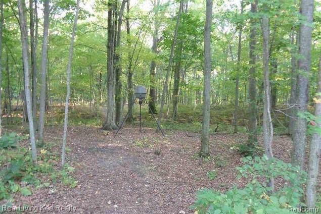 0-Lot 36 & Mary Anne, Caseville, MI 48725 (MLS #R219107625) :: Berkshire Hathaway HomeServices Snyder & Company, Realtors®