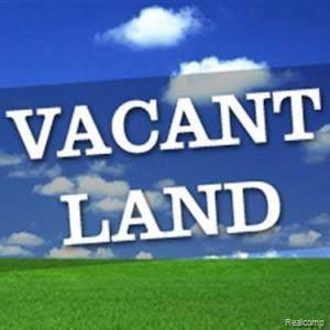 258 Main St, Belleville, MI 48111 (MLS #R219116653) :: Berkshire Hathaway HomeServices Snyder & Company, Realtors®