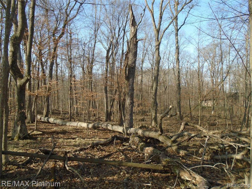 0 Driftwood Drive - Photo 1
