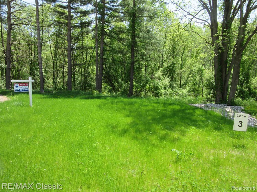 3 Pine Arbor Trl - Photo 1