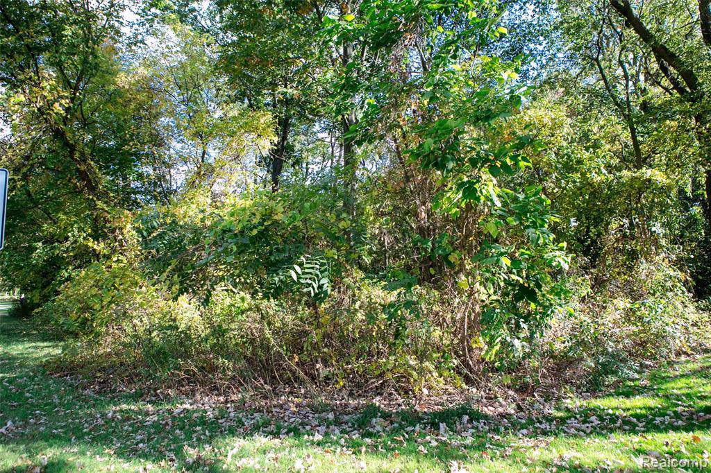0 9 Mile Rd. Lot 19 - Photo 1