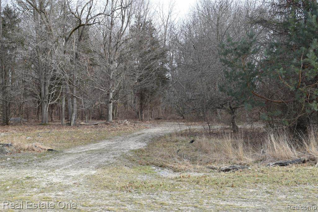 2731 Twin Oaks Drive - Photo 1