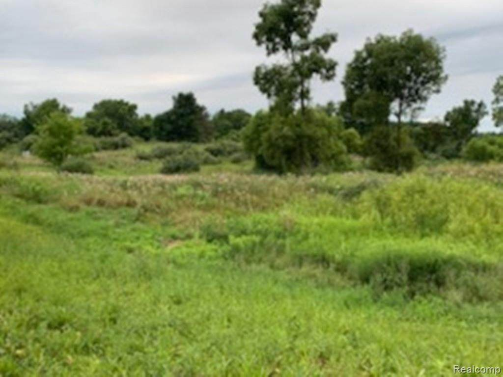 6 Marsh Rdg - Photo 1