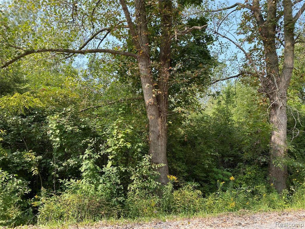 0 Timbers Road - Photo 1
