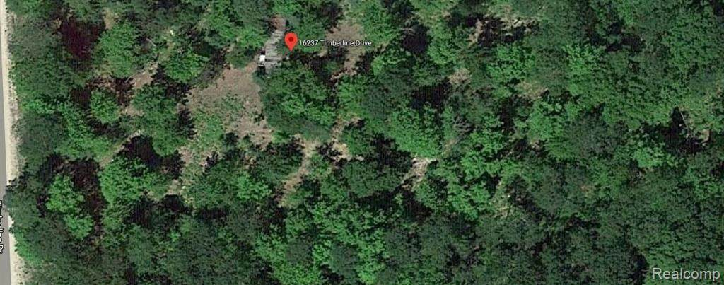 16237 Timber Line Drive - Photo 1