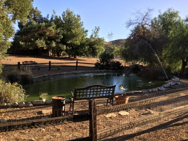 34851 Petersen Road, Agua Dulce, CA 91390 (#17010975) :: The Real Estate Offices of Talbot and Watson